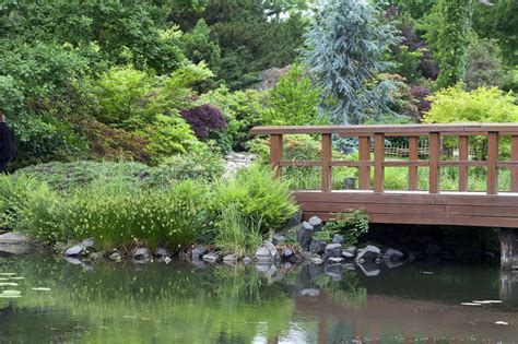 giardino giapponese piante giardino giapponese piante free per le scelte delle