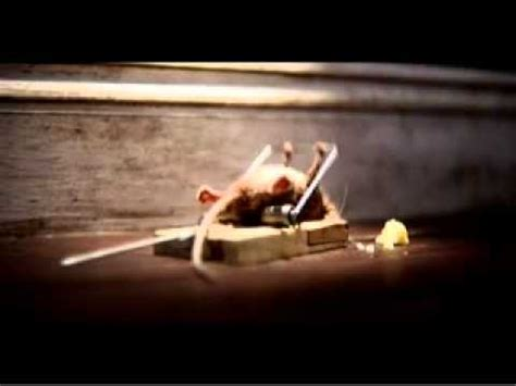 mouse benching mouse trap funny mouse trap add youtube