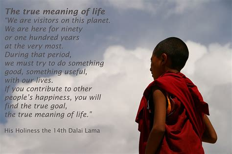 biography true meaning the true meaning of life flickr photo sharing