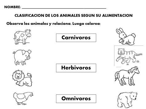 imagenes de animales por su alimentacion clasificaci 243 n de los animales seg 250 n su alimentaci 243 n la