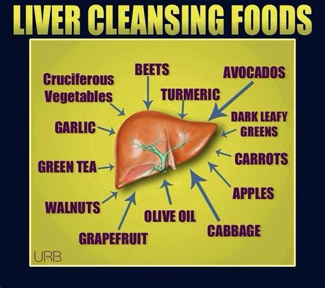 How Does The Liver Detox Work by Liver Cleansing Foods Liver Friendly