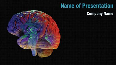 powerpoint templates free nervous system brain anatomy powerpoint templates brain anatomy