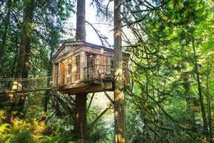 treehouse homes the 10 coolest homes in the treetops brit co