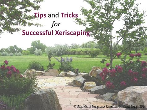 free xeriscape design plans free landscape ebook anne clark design