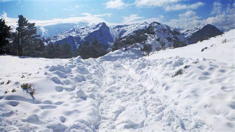 imagenes hermosas de navidad con nieve temperatura aula virtual de geograf 237 a e historia