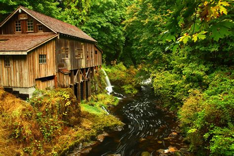 by the nearby forest and the bordeaux home shirt for the stadium usa forests parks mount rainier washington stream nature
