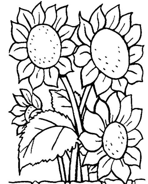 Cuci Gudang Stiker Tempelan Kupu Kupu Motif 3d Hiasan Wall gambar wallpaper bunga kartun gudang wallpaper