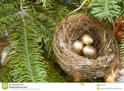 how to make a birds nest for xmas tree tree birds nest stock photo image of 9759636