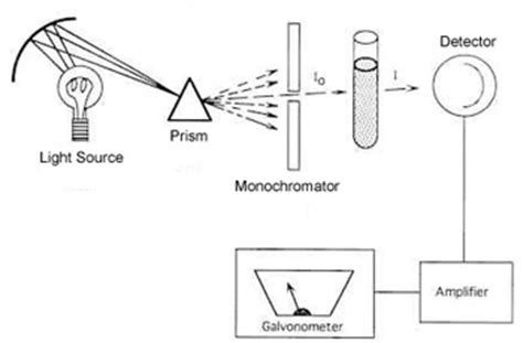 design an experiment using the spectrophotometer the spectrophotometer
