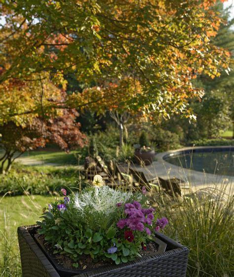 fall garden virginia northern virginia fall garden care