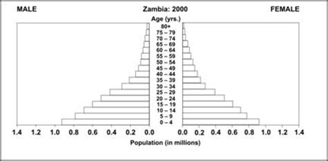 How To Make A Population Pyramid On Paper - pyramid graph definition exles