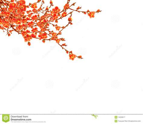 White Coral Home Decor Blossom Clipart Cny Pencil And In Color Blossom Clipart Cny
