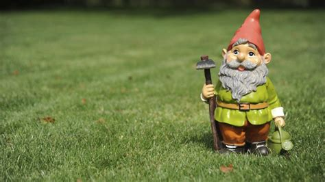 lawn gnome chelsea flower show our love hate relationship with