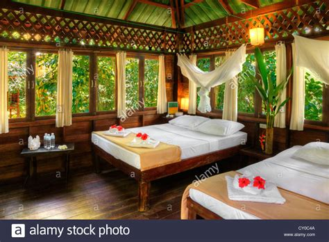 Atree House Interior At Our Jungle House A Lodge In The Rainforest Stock Photo