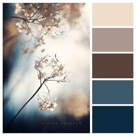 winter color schemes www facebook com nicolehansenphotography winter blues