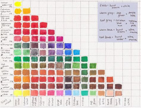 color chart created by mixing 2 equal parts of all colors in winsor newton cotman compact set