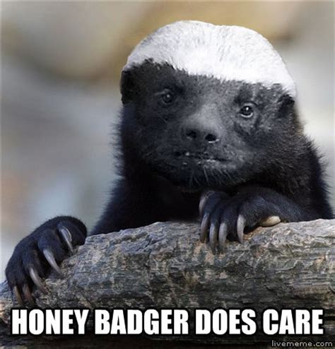 Badger Memes - livememe com misunderstood honey badger