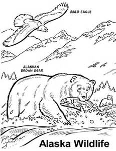 wildlife coloring pages free wildlife coloring book coloring pages alaska animals