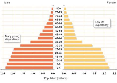 How To Make A Population Pyramid On Paper - gcse bitesize population structure and population