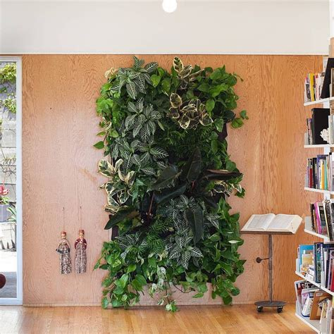 Woolly Planter by 78 Best Indoor Green Design Ideas Images On