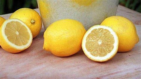 Lemon Detox Side Effects by Decoding The Lemon Detox Diet Plan Benefits Weight Loss