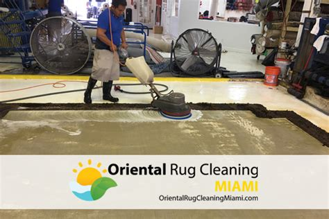 rug cleaners miami rug cleaning miami roselawnlutheran