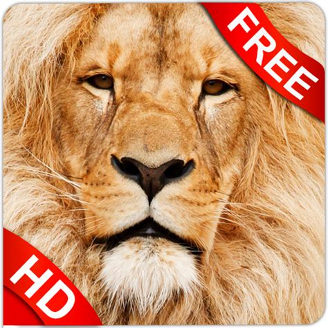 Premium Software Gift Card - amazon com animal sounds appstore for android