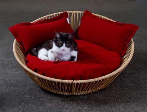 unique cat beds unique cat beds in contemporary design and high end quality