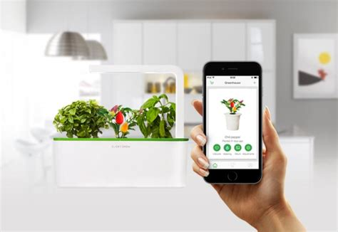 click and grow garden smart herb garden click and grow fuss free urban gardening