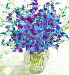 Purple Hobnail Vase Buy Orchid Bouquet Online How To Look After Orchids