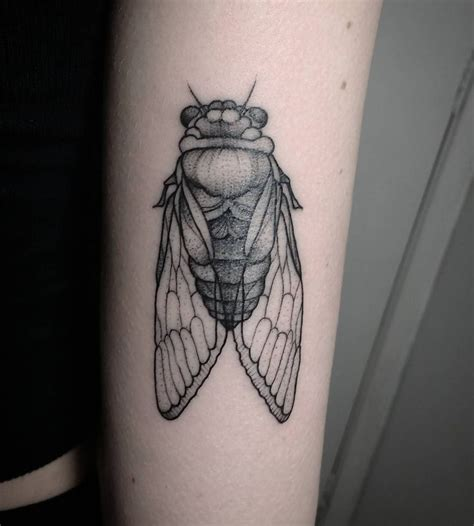 cicada tattoo meaning 25 best ideas about insect on bee