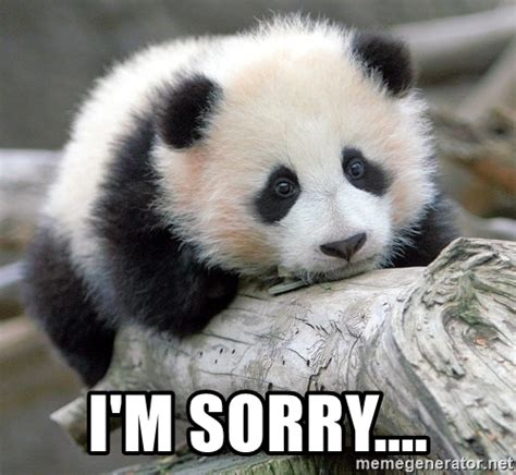 Sad Panda Meme Generator - i m sorry sad panda meme generator