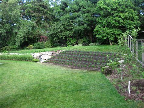 how to regrade a backyard portfolio urban horticulture design