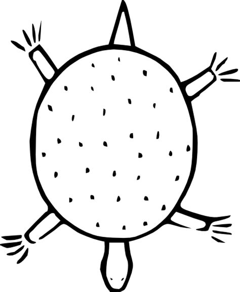 Turtle Outline Vector by Sea Turtle Outline Cliparts Co