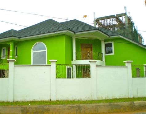 modern bright green exterior wall paint color with roof and for outside of home trends