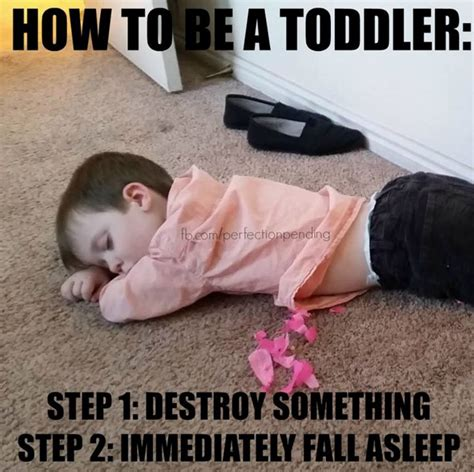Step Parent Meme - 25 hilarious parenting memes