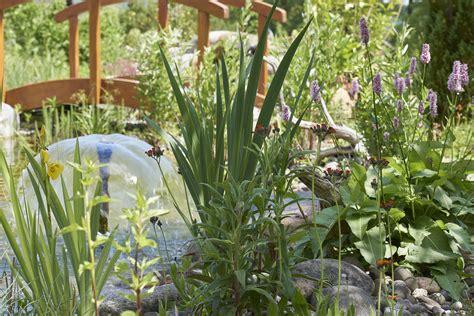 Pflanzen Für Den Teich 1037 by Bepflanzung Reding G 228 Rten