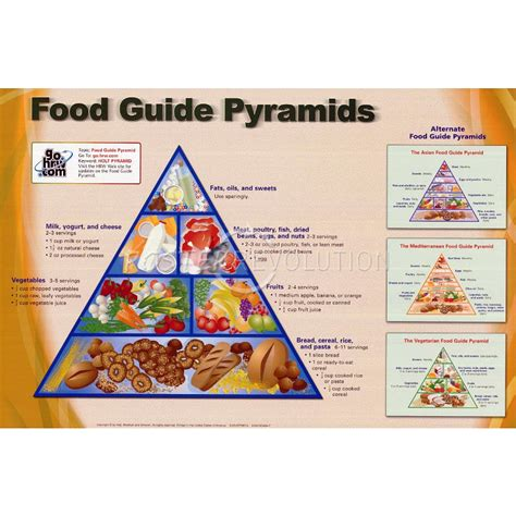 Printable Food Pyramid printable food pyramid pictures to pin on