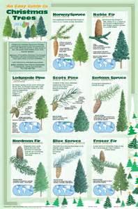 christmas trees gabriel hemery