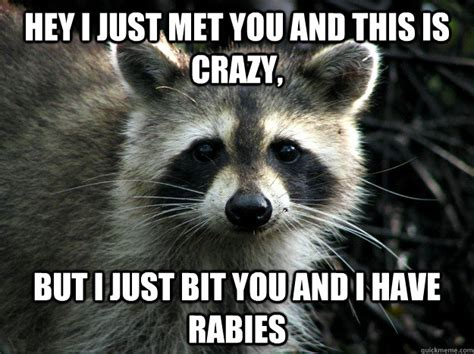 This Is Crazy Meme - hey i just met you and this is crazy but i just bit you