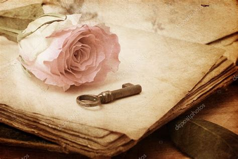 libro old roses pink rose on an old book vintage stock photo 169 alga38 39263647