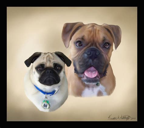 pug and boxer boxer and pug commision by liengod on deviantart