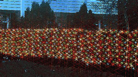 christmas net lights for bushes shrubs millennium