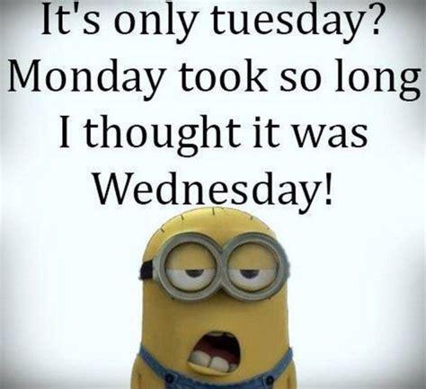 funny tuesday meme  work  king tumblr