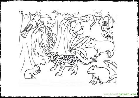 coloring pages of rainforest plants tropical rainforests coloring pages coloring home