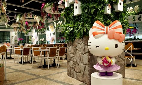 Hello Orchid hello orchid garden singapore welcome to hello