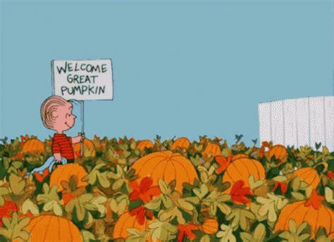 pumpkin gif great pumpkin gif pumpkin charliebrown pumpkinpatch