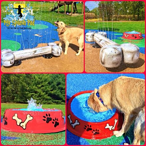 dog backyard playground best 25 dog playground ideas on pinterest agility