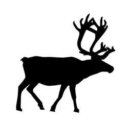 reindeer silhouette template reindeer silhouette template memes