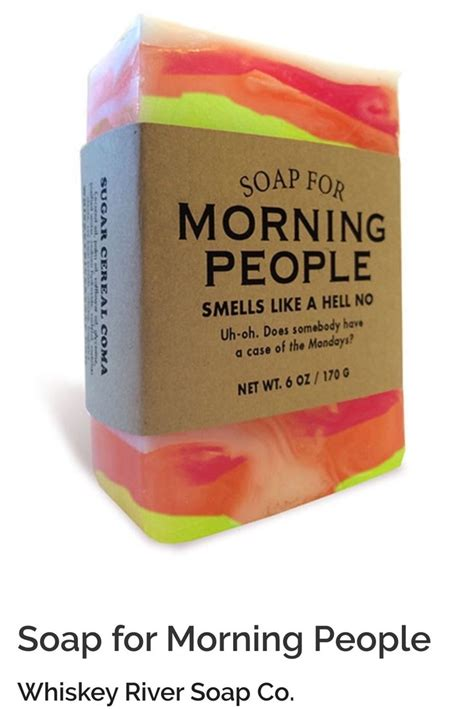 soap recipes 2 manuscripts soap business startup and bath bomb book books 17 best images about silly soaps and other gifts to